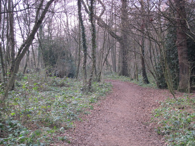 Footpath in Darrrick Wood (2)