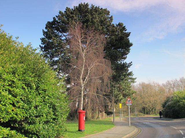 Broadwater Gardens, BR6