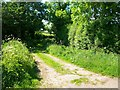 SJ4256 : Footpath to Aldford by Jeff Buck
