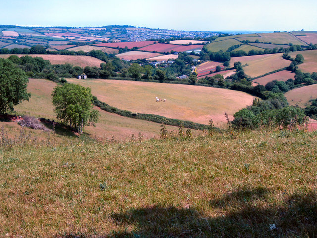 Rocombe Valley - ancient settlement site