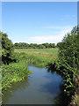TQ5408 : Cuckmere River by Simon Carey
