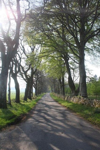 Road by Tillymannoch