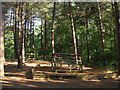TQ5507 : Adventure Play Area, Abbot's Wood by Simon Carey