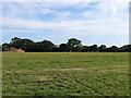 TQ5507 : Gate Field by Simon Carey