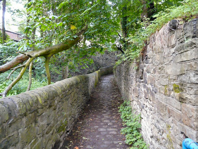 Path to Mottram Road