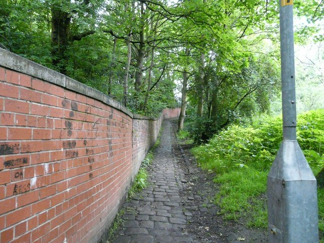 Footpath up to Godley
