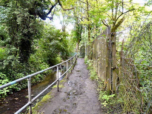 Footpath by Godley Brook
