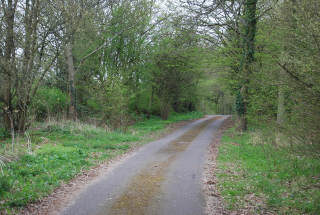 Track to Kilsyth