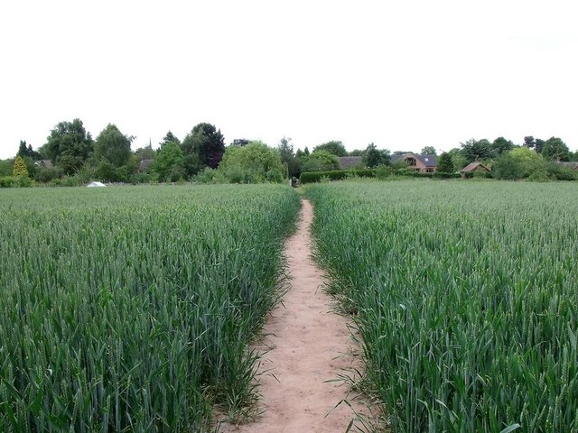Footpath to Repton