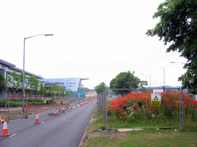 Longbridge - Poppies & Roadworks