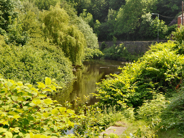 River Tame, Dukinfield