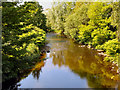 SJ9498 : River Tame, Dukinfield by David Dixon