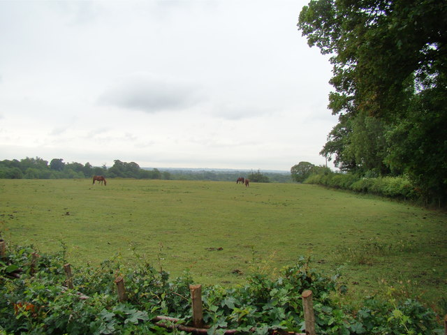 View of Petts Wood from the Hawkwood Estate path