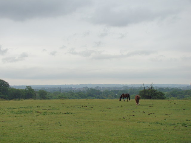 View of Petts Wood from the Hawkwood Estate path #2