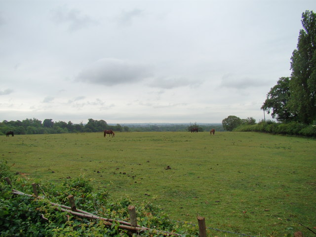 View of Petts Wood from the Hawkwood Estate path #3