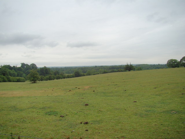 View of Petts Wood from the Hawkwood Estate path #5