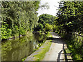 SJ9396 : Peak Forest Canal, Dukinfield by David Dixon
