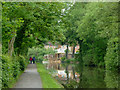 SJ8839 : Trent and Mersey Canal near Trentham, Staffordshire by Roger  Kidd