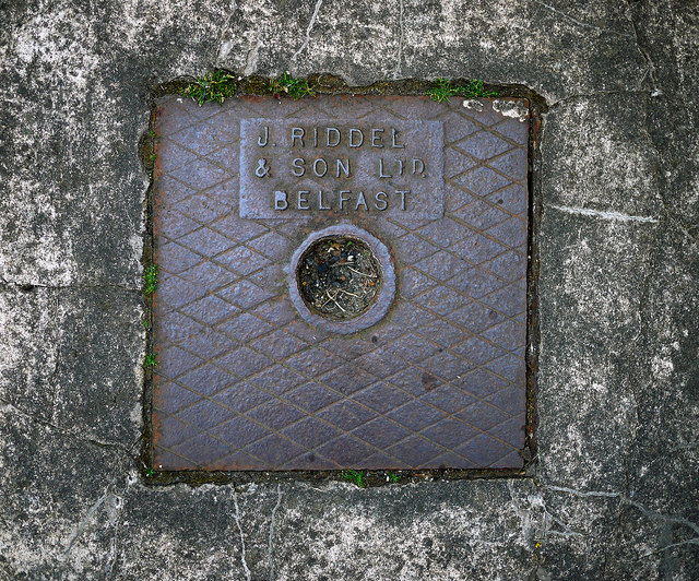 Drain cover, Groomsport