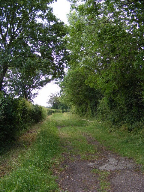 Bullswood Lane Byway  to the Hollow Lane Byway