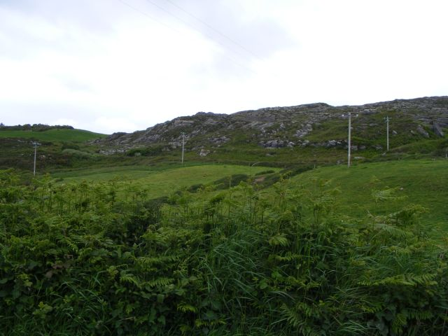 Hillside to the west of the road to Tragumna - Drishanebeg Townland