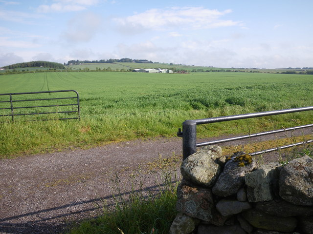 Fields northwest of Cowan Lea