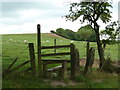 SK3173 : Stile and field, Birley by Andrew Hill