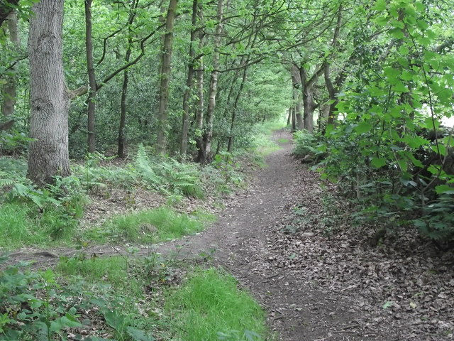 Path to Knypersley Park