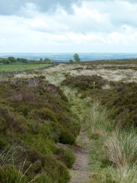 Moorland footpath, Beeley Moor access land