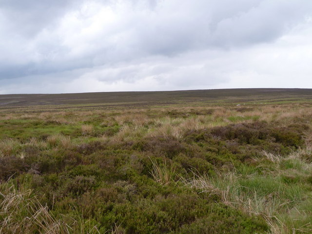 Expanse of moorland on Beeley Moor
