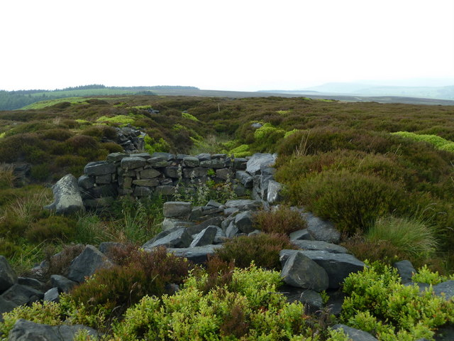 Near the top of Beeley Moor, Harland Edge