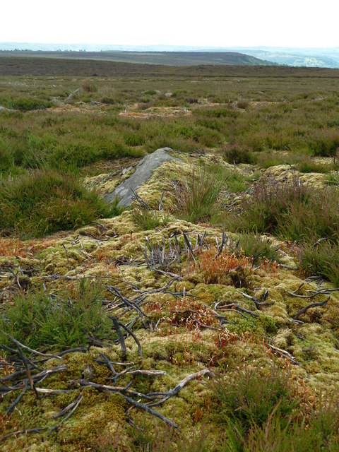 Moorland ground after a dry spring