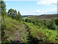 SK3168 : Footpath descending from Longside Moor by Andrew Hill