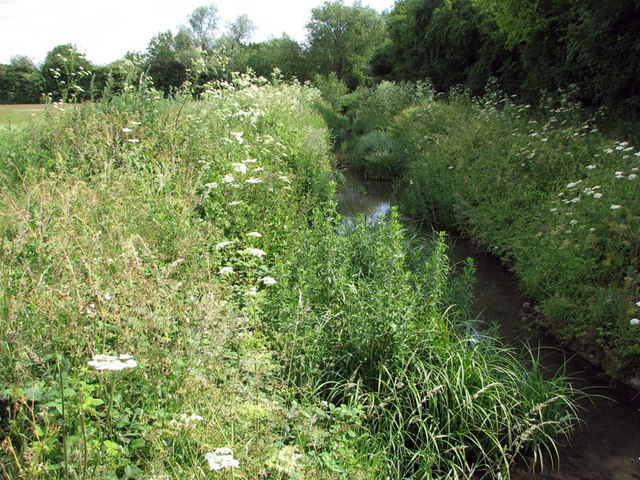 Coldham's Brook near Barnwell Road