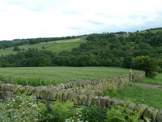 Valley view near Cathole Farm