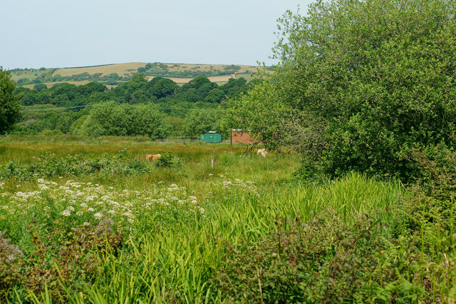 View Across Scotchells Brook, Alverstone