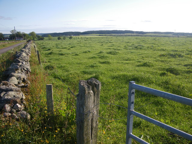 Drystone dyke frames the verdant field