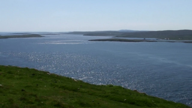 Image result for bluemull Sound