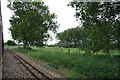 TG2422 : Bure Valley Railway near Little Hautbois Hall by Glen Denny