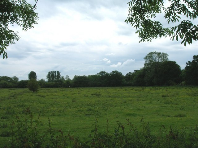 Grazing land south of Salton Lane