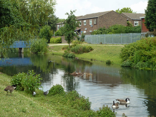 Pond by the A12