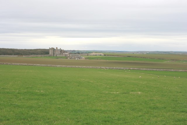 Pastureland near the Castle of Mey