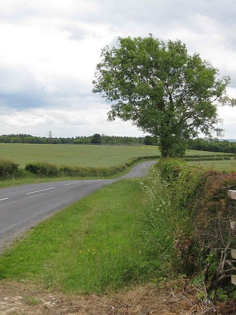 Whitby Road to Thornton-le-Dale