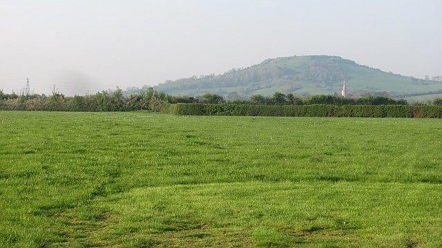 Field, Dulhorn