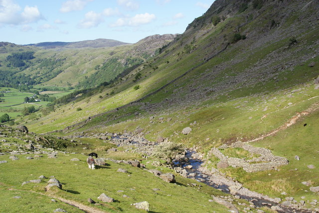 Sheepfold by Combe Gill