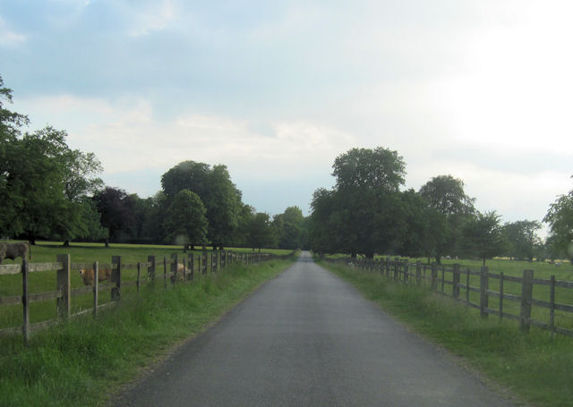 Road through Grainsby Park