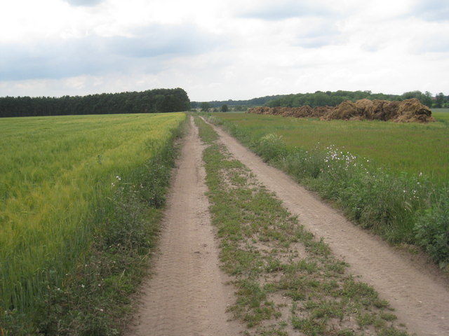 The footpath from Bothamsall