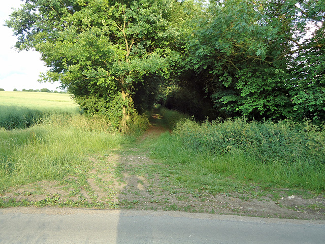 Entrance to tree lined footpath