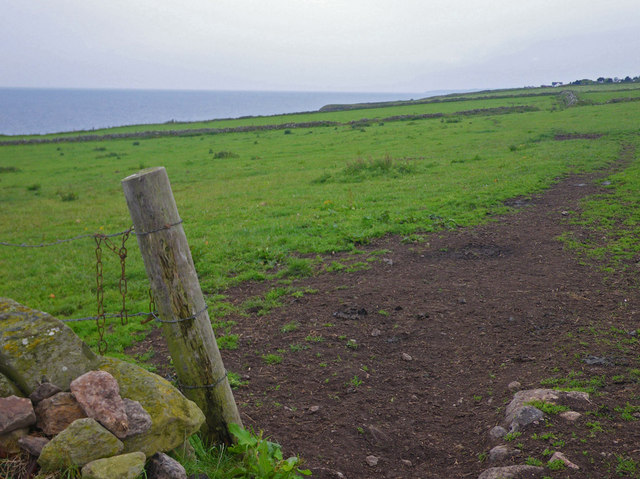 Coastal view towards Downies