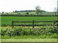 SP7715 : Fields near Fleet Marston by Sarah Charlesworth